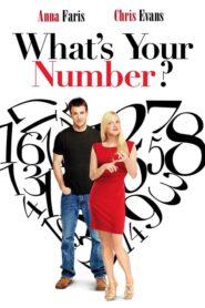 Ilu miałaś facetów?