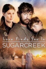 Miłość znajdzie cię wszędzie: Sugarcreek