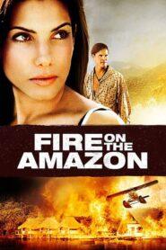 Amazonka w ogniu