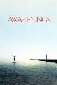 Przebudzenie
