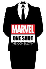 Marvel One-Shot: Konsultant