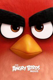 Angry Birds: Film