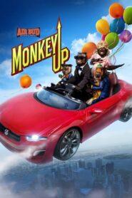 Monty: małpia gwiazda