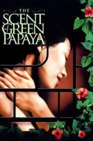 Zapach zielonej papai
