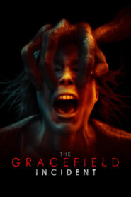 The Gracefield Incident