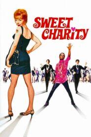 Słodka Charity