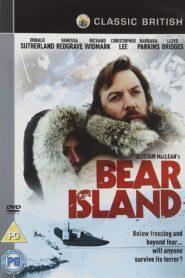 Wyspa Niedźwiedzia