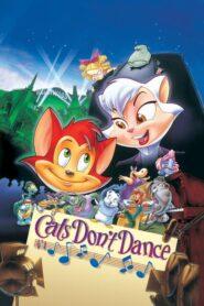 Koty nie tańczą