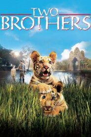 Dwaj bracia