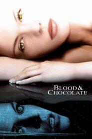 Krew jak czekolada