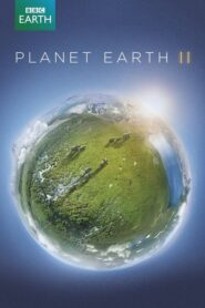 Planeta Ziemia II: Season 1