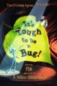 It's Tough to Be a Bug