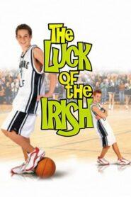 Irlandzkie szczęście