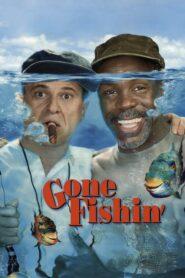 Przygoda na rybach