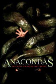 Anakondy – Polowanie na Krwawą Orchideę