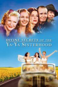Boskie sekrety siostrzanego stowarzyszenia Ya-Ya
