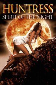 Huntress: Spirit of the Night