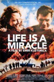 Život je čudo