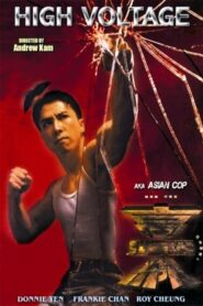 亞洲警察之高壓線